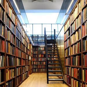 Библиотеки Николаевска
